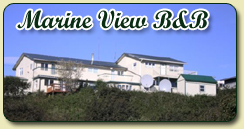Welcome to the Marine View B&B